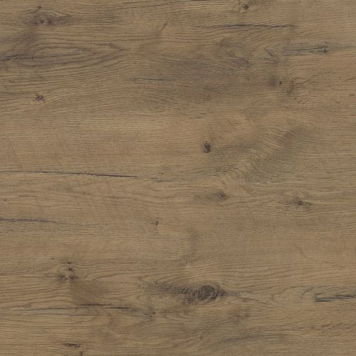 R20027 Pale Lancelot Oak